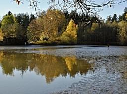 Fotografie k článku Podzimní výlovy rybníků na Třeboňsku