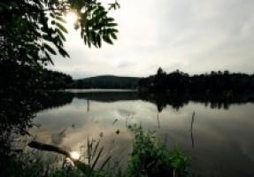 Fotografie k revíru Panský rybník