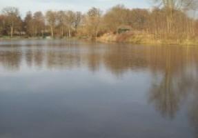 Fotografie k revíru Šebkův rybník