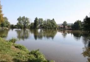 Fotografie k revíru Žákův rybník