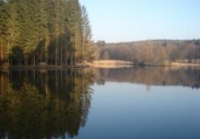 Fotografie k revíru Dubový rybník